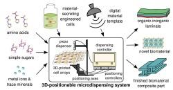 NASA sponsert Forschung für 3D-Druck Materialien