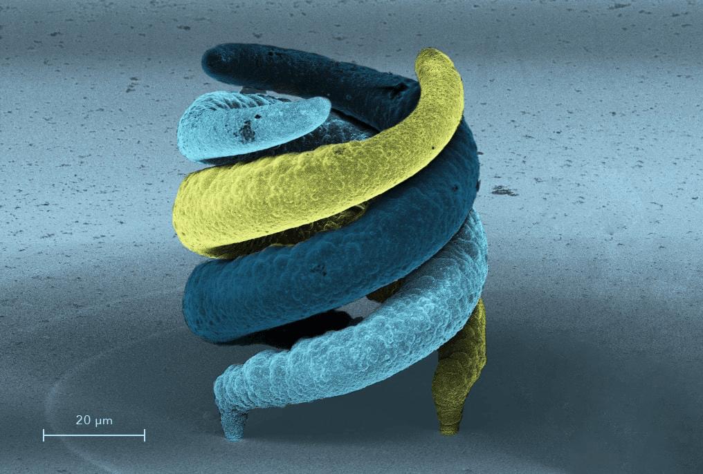 Cytosurge FluidFM Microscope IR