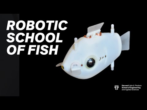 Robotic swarm swims like a school of fish