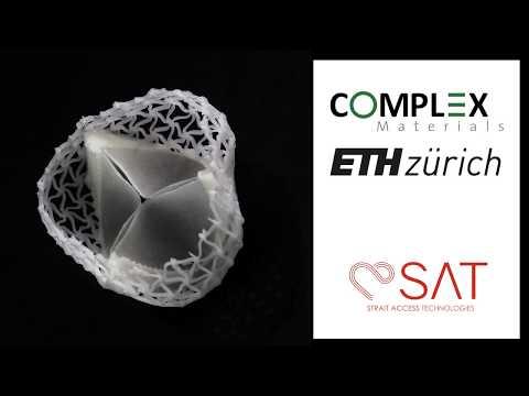 Custom 3D Printed Heart Valves