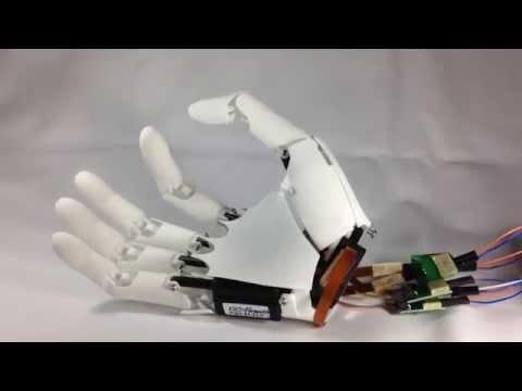 Youbionic 5 fingers Movement