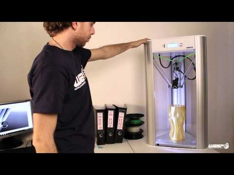 Delta WASP 3D printer / Resurrection System