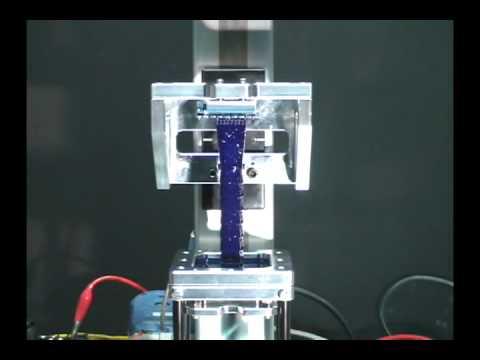 3D Printer - www.miicraft.com