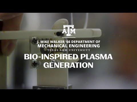 Bio-Inspired Plasma Generation
