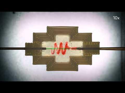 Mali lab - 3D bioprinted model of vascularized gut