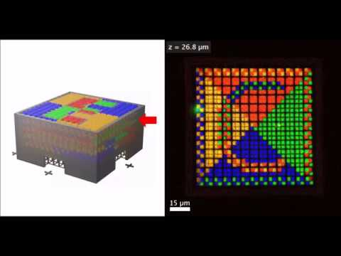 Multimaterial 3D laser microprinting using an integrated microfluidic system