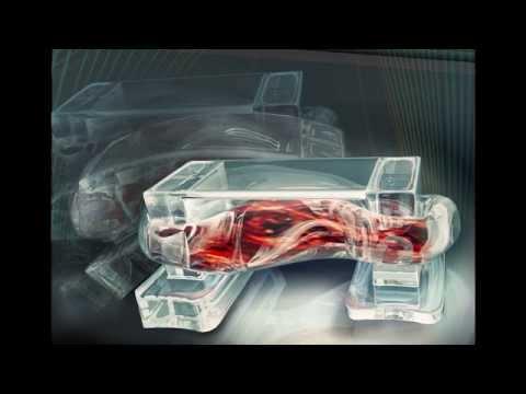 Muscle-Powered Bio-Bots: Soft biological machines take a step forward