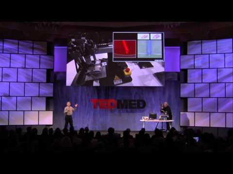 Gabor Forgacs at TEDMED 2011