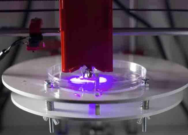 michigan tech biobots bioprinter - 3D-Druck in der Medizin - Diese 5 Bereiche haben das größte Potential
