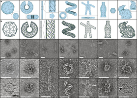 DNA_origami_3d_software