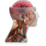Gallery PJ J750 Head 150x150 - Stratasys bringt den neuen Stratasys J750 mit 360.000 Farben auf den Markt