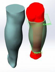 Abbildung 3 Can Touch 3D Modell 231x300 - 3D-Scanner in der Medizin: Segen für Mensch und Tier