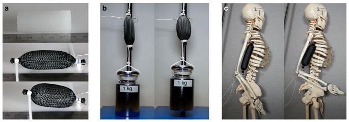 3d druck softrobotik muskeln effektoren - Lebensechten Robotern einen Schritt näher - Forscher drucken synthetische Muskeln