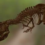Trix T Rex 1 150x150 - Tyrannosaurus Rex Skelett mit 3D-Scan vervollständigt