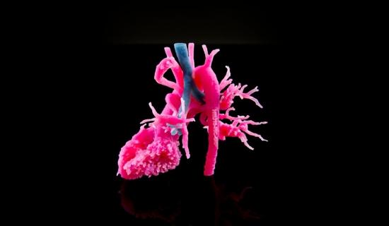 materialise mimics inprint software 3d druck medizin modelle - In Kürze: 3D Systems, Stratasys und Materialise verstärken Engagement am Medizinmarkt