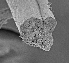 nanocellulose 3d druck - Nanocellulose als zukunftsträchtiges biobasiertes Material im 3D-Druck