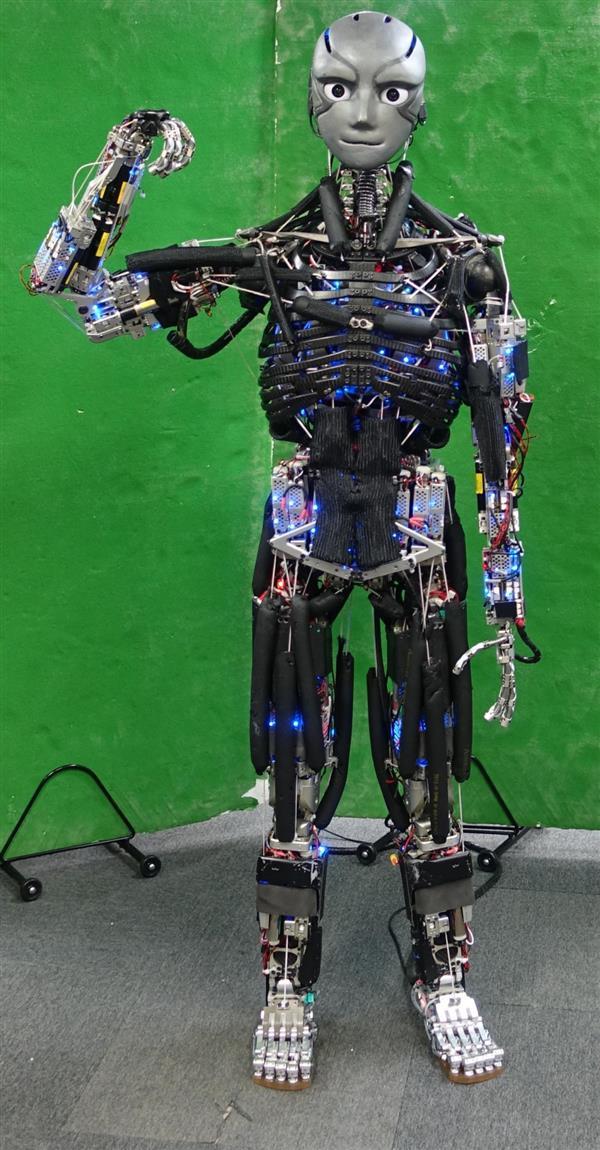forscher der universit t von tokio 3d drucken humanoide roboter. Black Bedroom Furniture Sets. Home Design Ideas