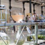 Algen Seegras Filament 2 150x150 - Umweltfreundliches Filament aus Algen und Seegras
