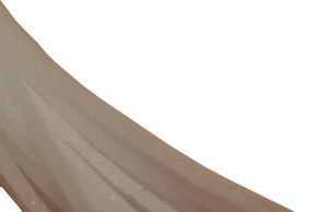 purefil Reinigungsfilament