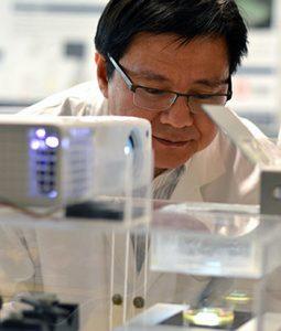 direct laser bioprinting 3d druck gewebe 255x300 - 3D-gedrucktes Gewebe soll zu Fortschritt in Krebsforschung führen