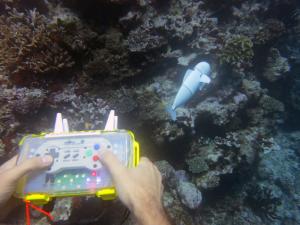 """3d gedruckter roboterfosch sofi roboter mit 300x225 - MIT-Ingenieure 3D-drucken """"SoFi-Roboter"""" für Unterwasseraufnahmen"""