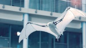 "Festo B 3d gedruckte fledermaus replik bionicFlyingFox 3 300x169 - Festo entwickelt robotische 3D-Fledermaus-Replik ""BionicFlyingFox"""