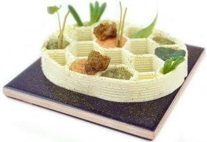 JanSmink 3D gedrucktes Gericht 300x206 - Dauerhafts Restaurant für 3D-gedruckes Essen feiert Premiere in den Niederlanden
