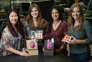 gebaermutterhalskrebs 3d gedruckte modelle 300x202 - 3D-gedruckte Modelle unterstützen Früherkennung von Gebärmutterhalskrebs