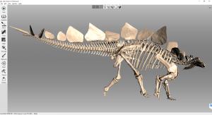 02 Artec 3D Das fertige 3D Modell des Stegosaurus Seite 300x163 - Detailgetreuer Scan eines zusammenhängenden Dinosaurierskeletts