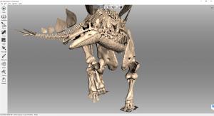 03 Artec 3D Das fertige 3D Modell des Stegosaurus vorne 300x163 - Detailgetreuer Scan eines zusammenhängenden Dinosaurierskeletts
