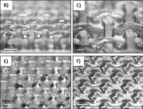 Harz e1528902636324 - Neues hochauflösendes 3D-Druckharz für Gewebe dank der Forscher der Otago Universität