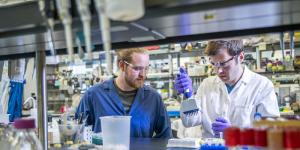 JBEI Printing DNA 300x150 - Neue Forschung könnte zu einem DNA 3D-Drucker führen