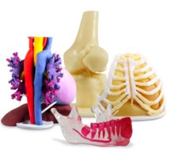 gedruckte Anotomie Modelle - 3D Systems bietet neuen On-Demand-Service für 3D gedruckte anatomische Modelle an