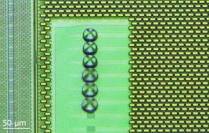 Nanoscribe LensOnChip 2018 300x191 - 3D-Druck auf Mikrochips für photonische Systeme und MEMS