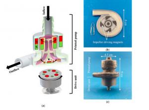 """Forscher entwickeln MagFil Filament für magnetische Blutpumpe1 300x222 - Forscher entwickeln """"MagFil""""-Filament für magnetische Blutpumpe"""