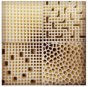 PADT Struktur Prototypen 3DDruck 300x296 - Nasa zahlt 127.000$ für Biomimicry Forschung
