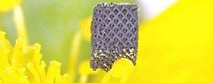 graphen 3d druck 300x117 - Forscher entwickeln neues Graphen-3D-Druckverfahren