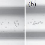NTU Akustische Nozzles Micropartikelausrichtung 150x150 - Akustische Nozzles zur Verbesserung von 3D-gedruckten Teilen