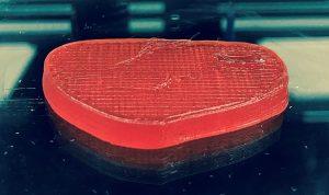 Giuseppe Scionti Fleisch 3Dgedruckt 300x178 - Giuseppe Scionti stellt 3D-gedrucktes Fleisch aus Erbsen und Seetang her