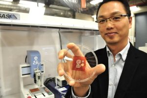 Internet of Things sensor 3D Cellulose Filament 300x200 - SFU-Forscher verwenden 3D-gedrucktes Zellulosematerial für die Entwicklung von  IoT-Sensors