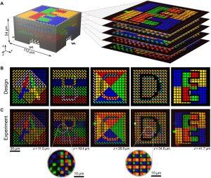 Multimaterial 3D Lasermikrodruck mit einem integrierten Mikrofluidsystem 300x254 - Maßgeschneiderter Materialmix für dreidimensionale Mikro- und Nanostrukturen